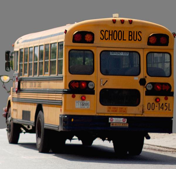 Greenville County School Bus Drivers, Aides Needed (Image 1)_9248