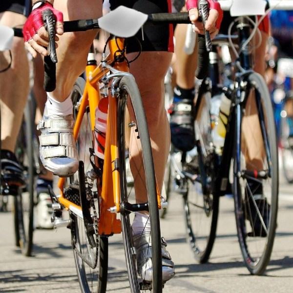 Bike_169941