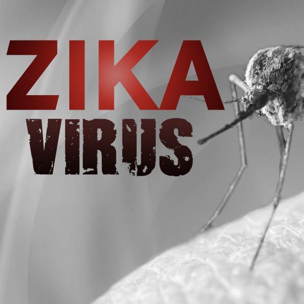 zika virus for web_177263