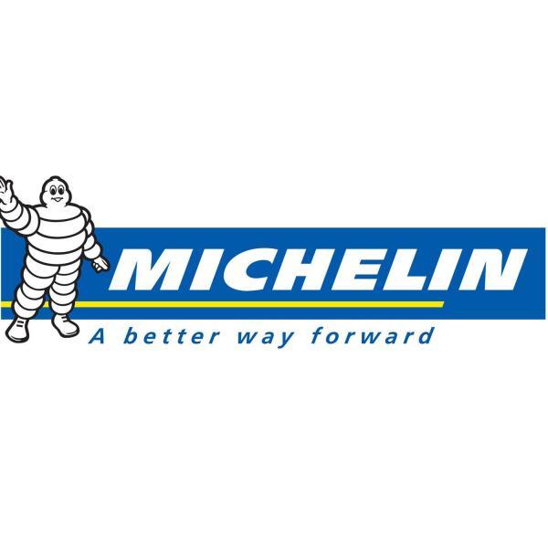 Michelin logo_60449