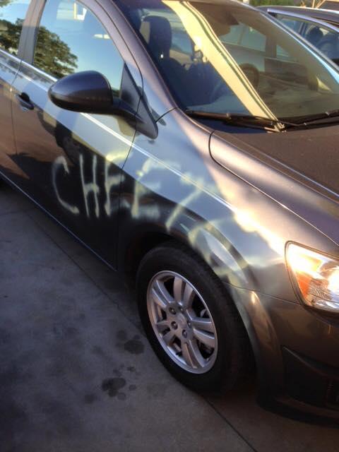 cheeter_182027