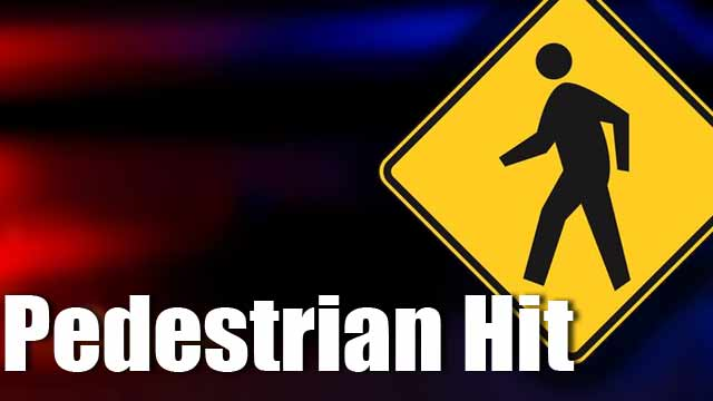 Pedestrian Struck, Killed In Greenville Co. (Image 1)_17209