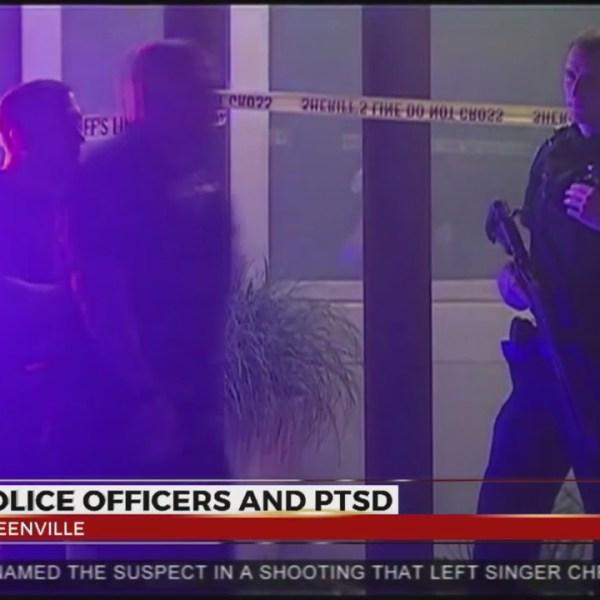 Police officers provide PTSD training