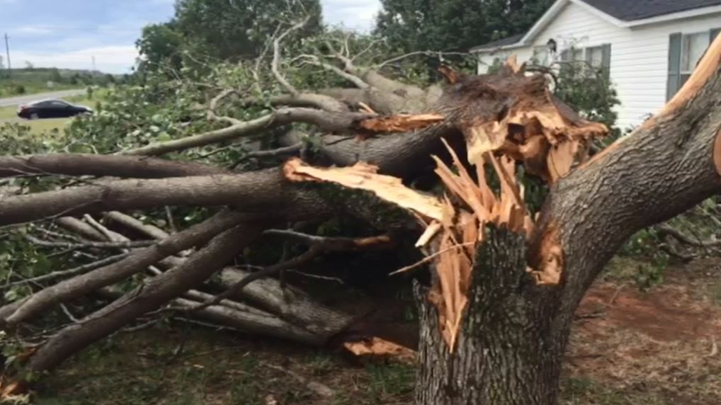 Storm Damage 1_213313