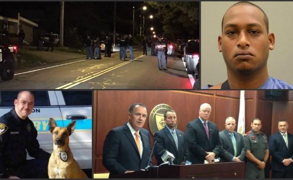 fugitive-arrest-collage_245206