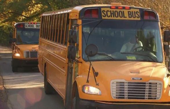 school-bus-generic_241292