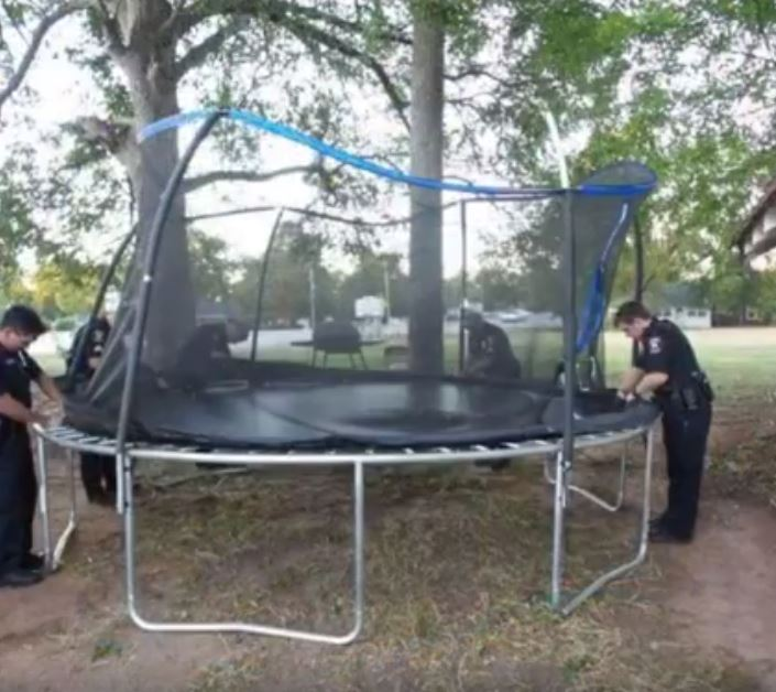 trampoline2_262021