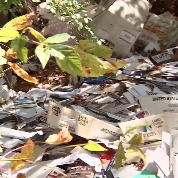 Mail dumped into woods in Georgia_261424