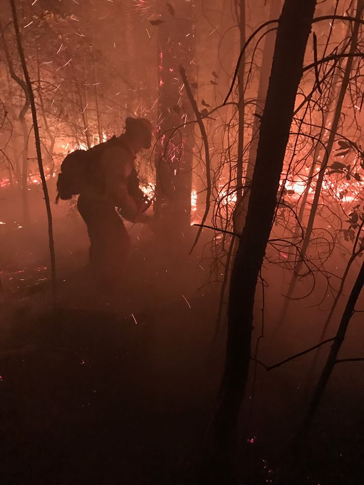 asheville-fire-dept-wildfires_269600