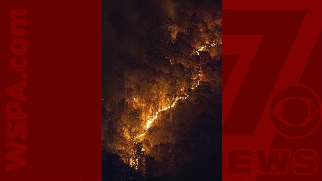 wildfire-web_267651
