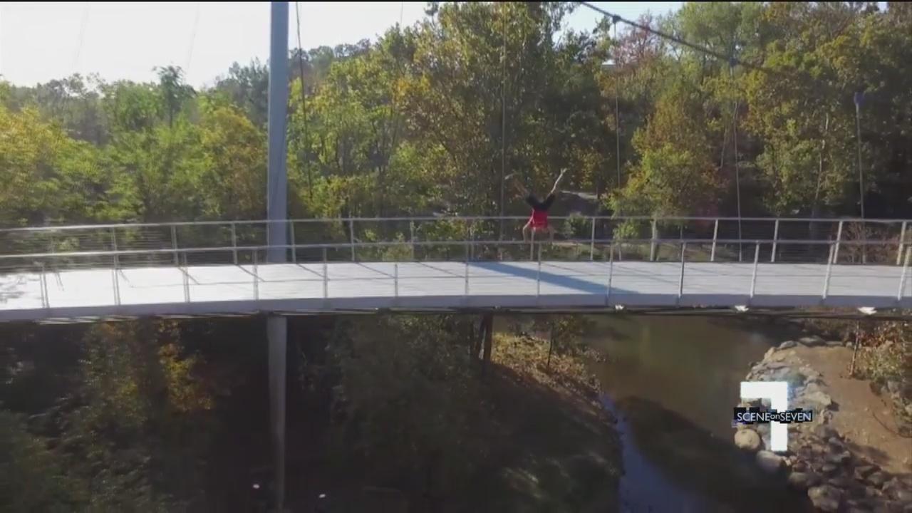 bridge_285998