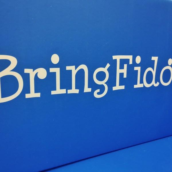 BringFido_289701
