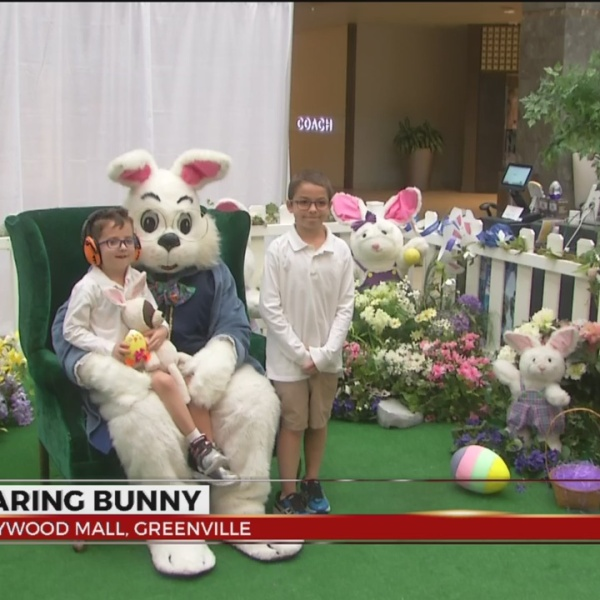 easter bunny_352666