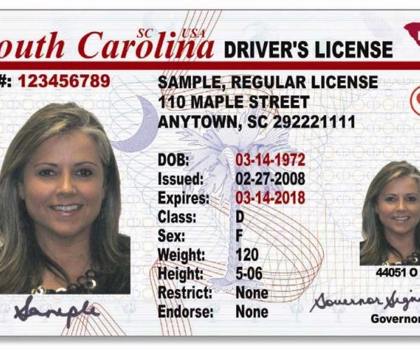 Sample SC Drivers License_305058