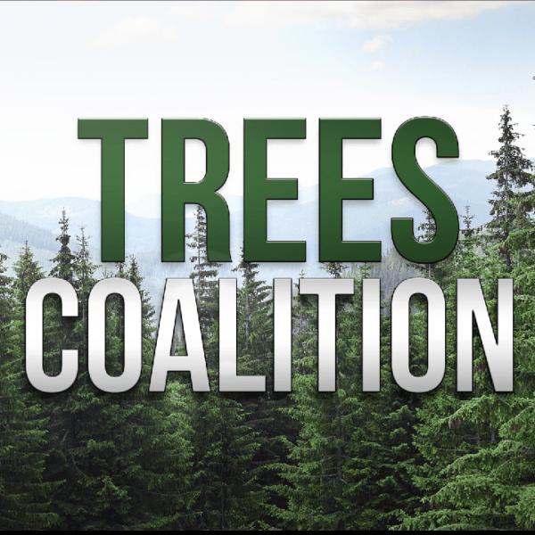 trees coalition_342817