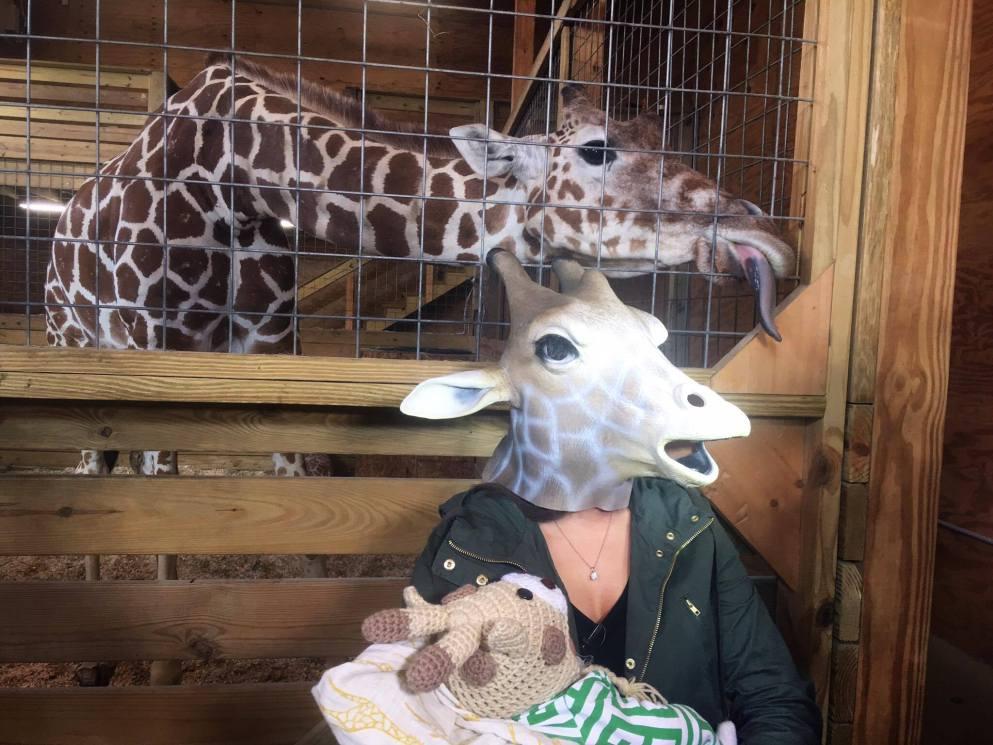 giraffe mom_367126