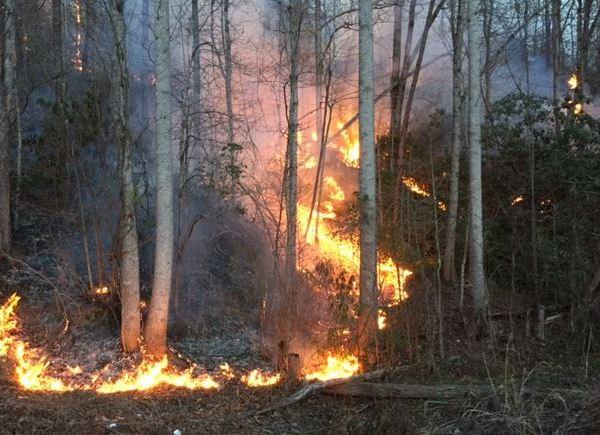 Dobson Knob Fire_362052