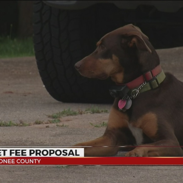 Proposed licensing fee would make pet owners pay more