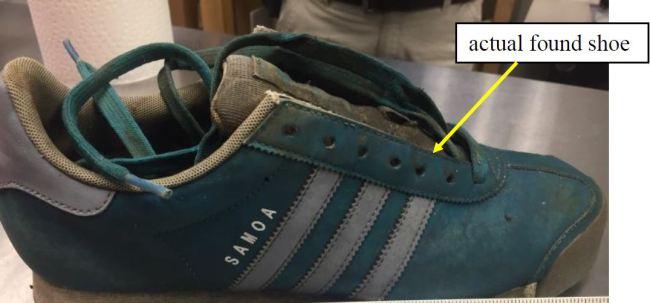 actual-shoe_376318