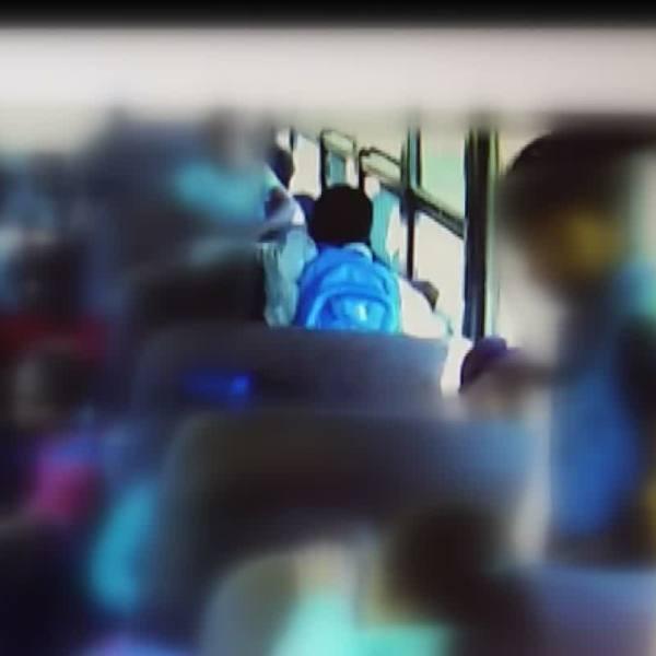 school bus_374005