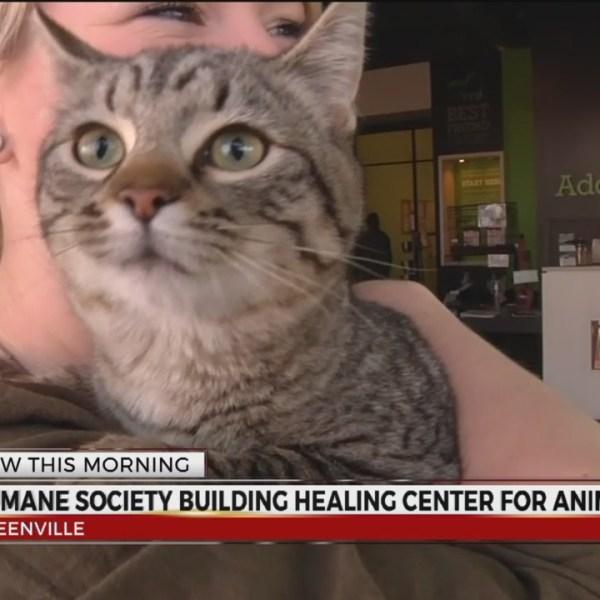 GVL humane society healing center_405766