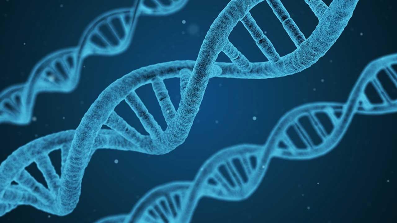 dna genes crispr generic_425636