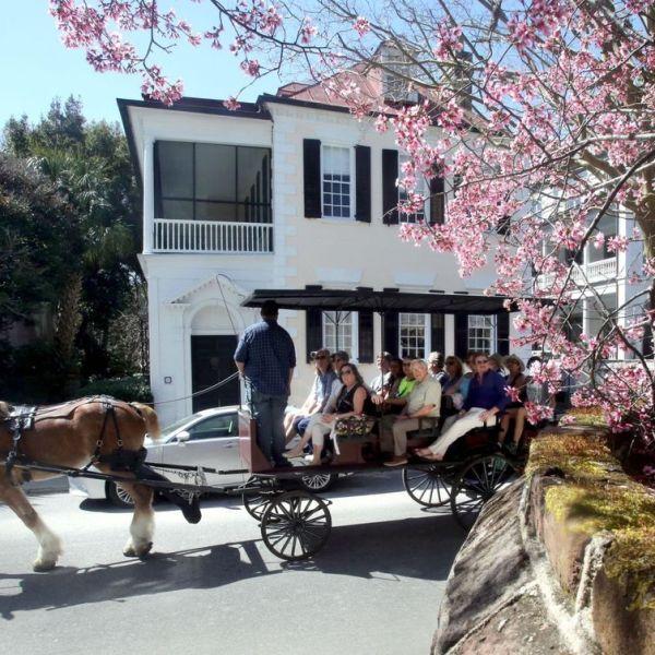 horse-carriage-ap-photo_413080