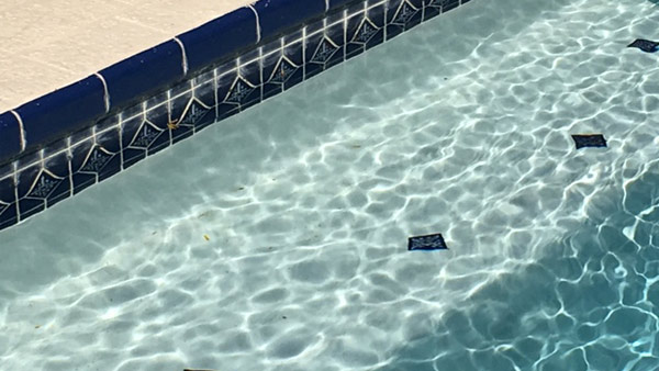 r-generic-swimming-pool-web_439756