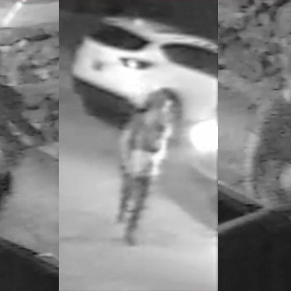 suspect-WEB_465730