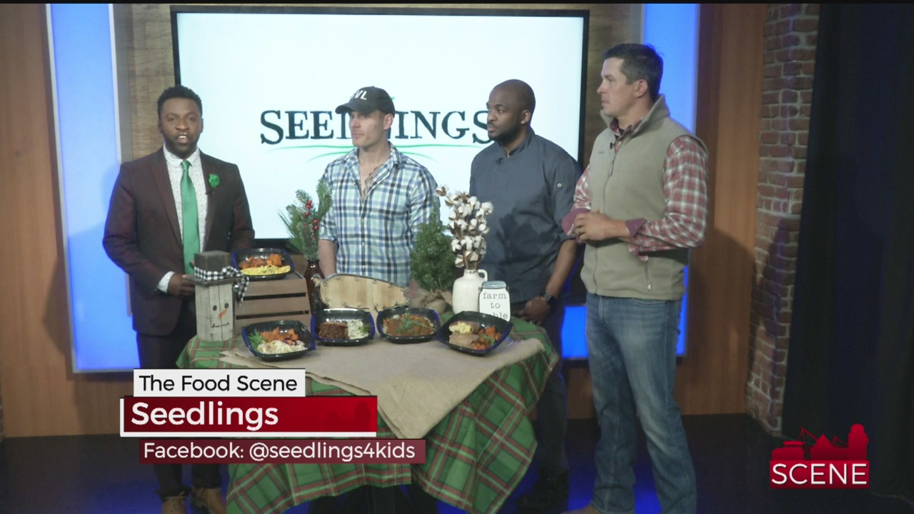 Seedlings_504895