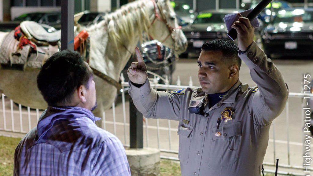 CHP horse DUI_553836