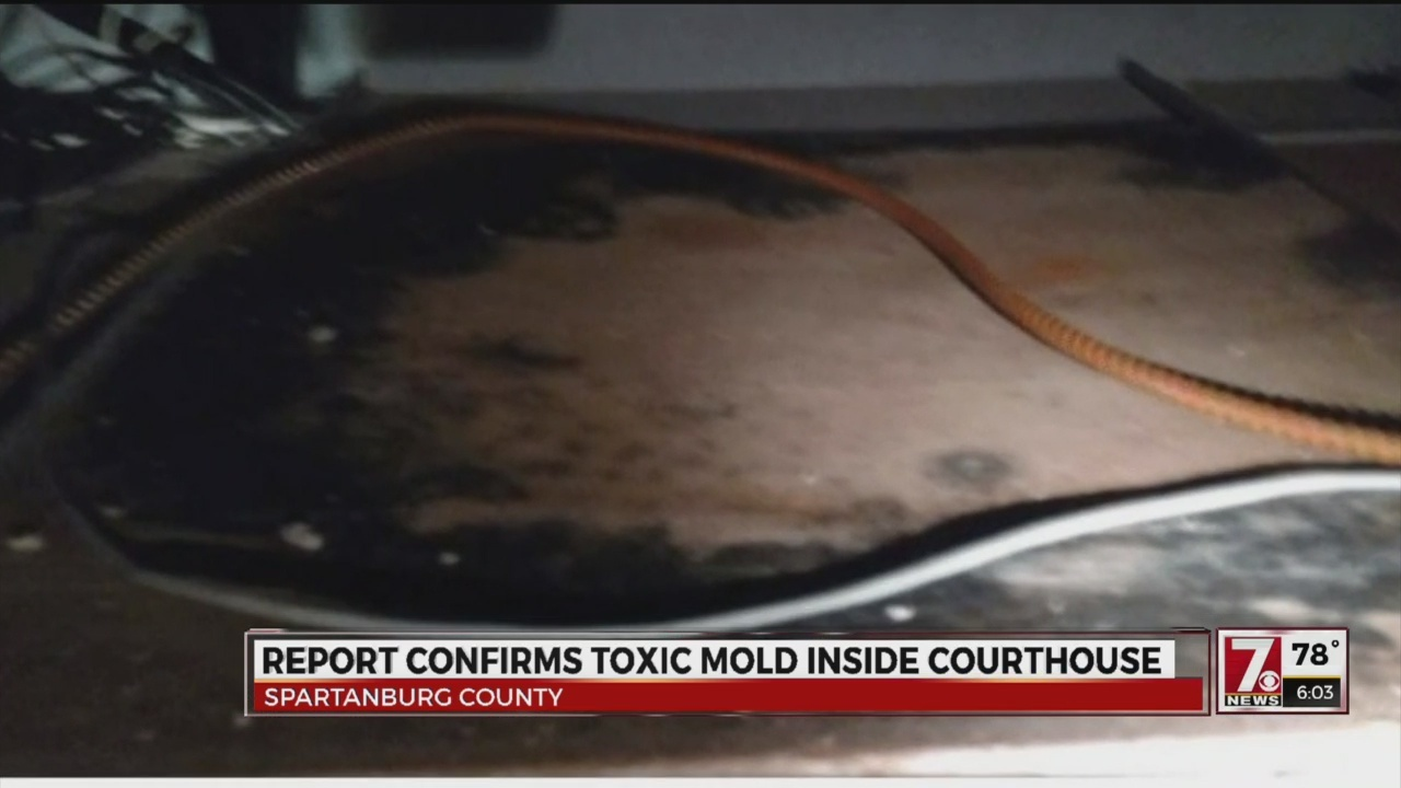New Report Confirms Mold Still at Courthouse