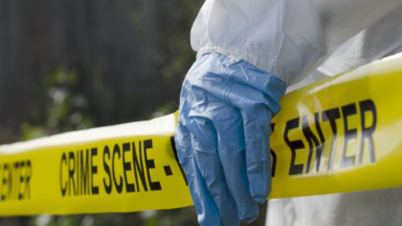 crime scene generic body found forensics investigation