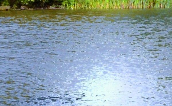 pond lake generic water river_220831
