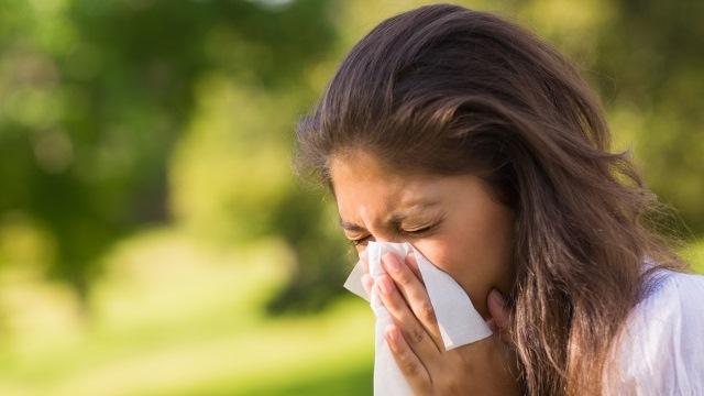 sneeze-sick-allergies_249104