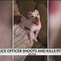 Police_shoot_and_kill_dog_1_20180818032847