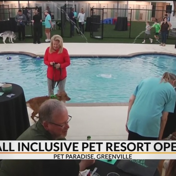 All inclusive pet resort with swimming pool opens in Greenville