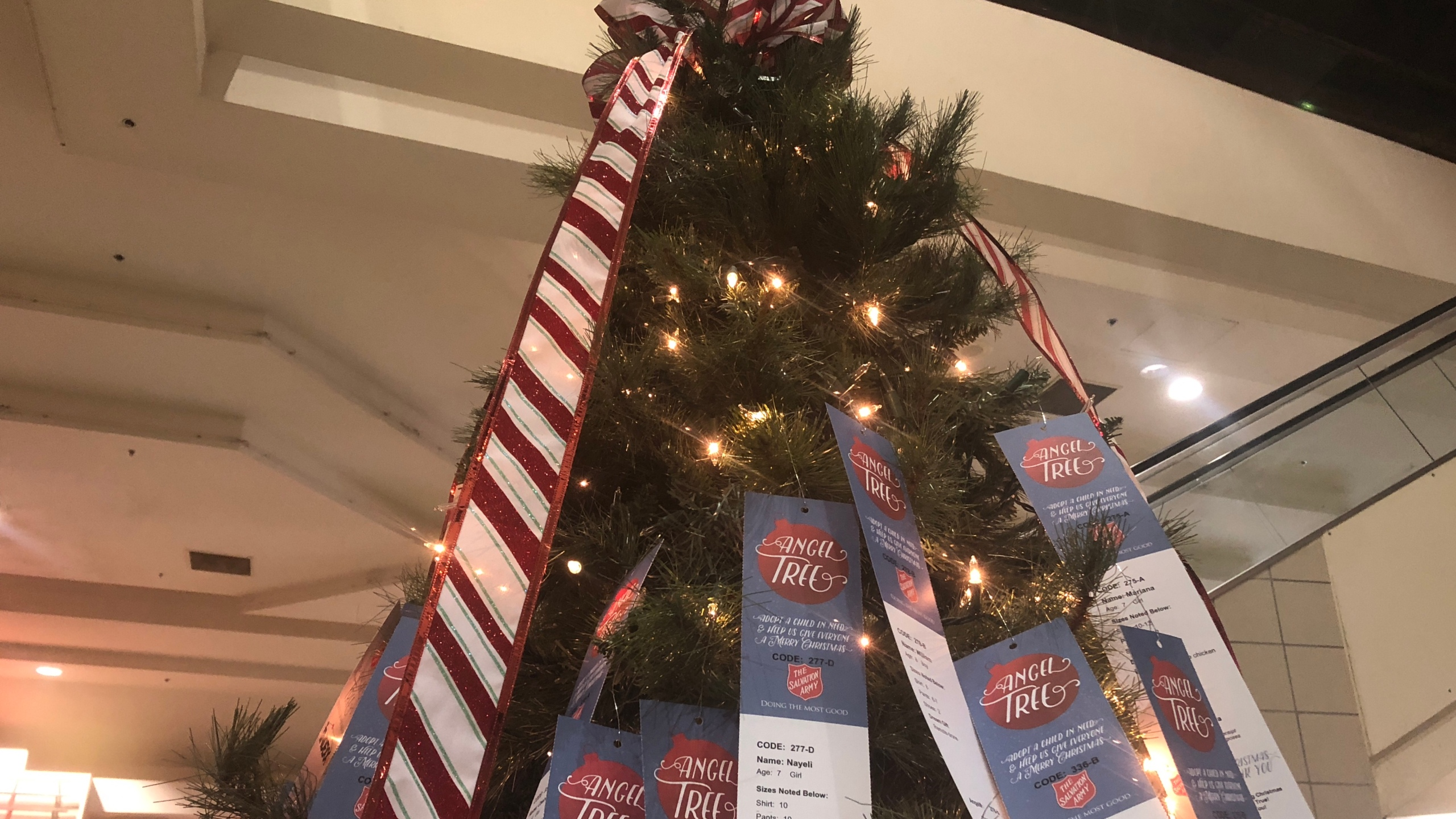 Christmas Help Programs 2020 The Salvation Army opens registration for 2020 Angel Tree program