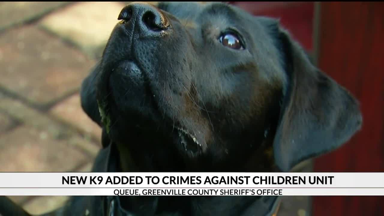 New_K9_added_to_Crimes_Against_Children__5_20181127173755
