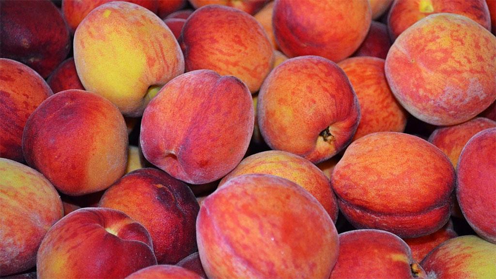 peaches_1548690971015.jpg