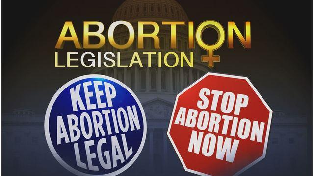 ABORTION DEBATE_1555546401583.JPG_83017842_ver1.0_640_360_1555596675307.jpg.jpg