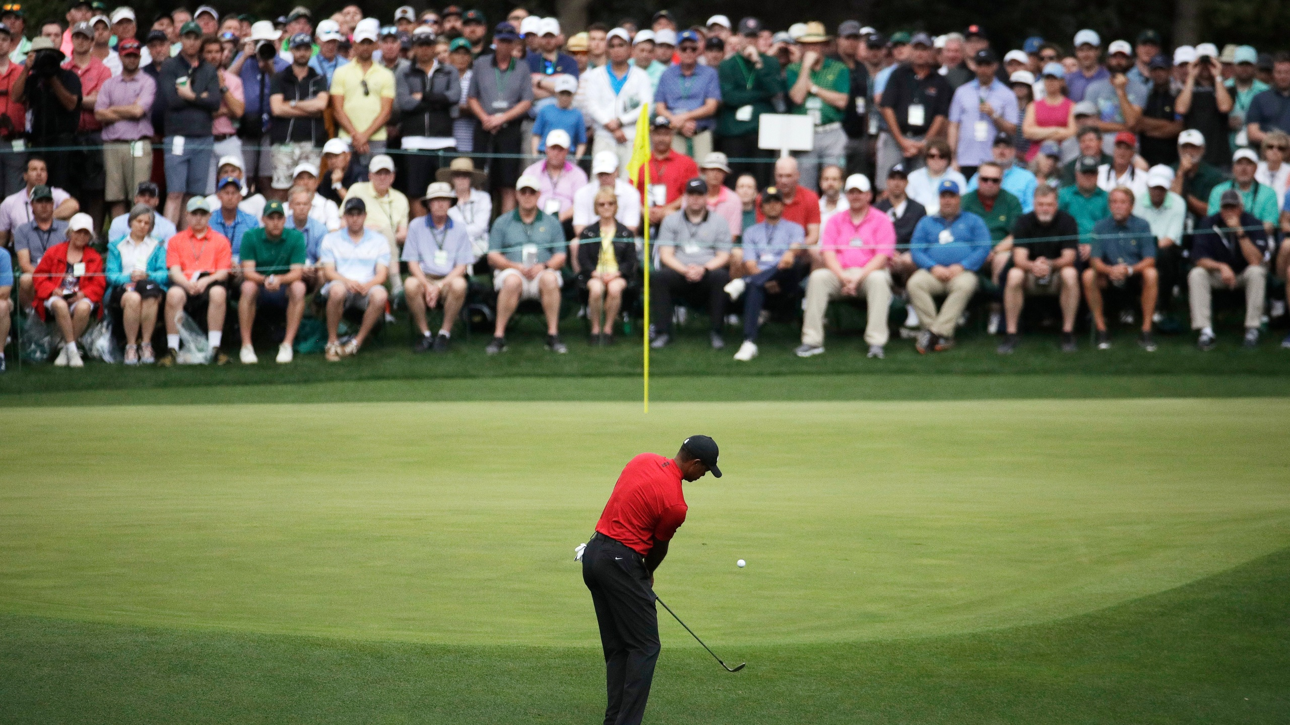 Masters Golf Tiger Woods _1555266719071