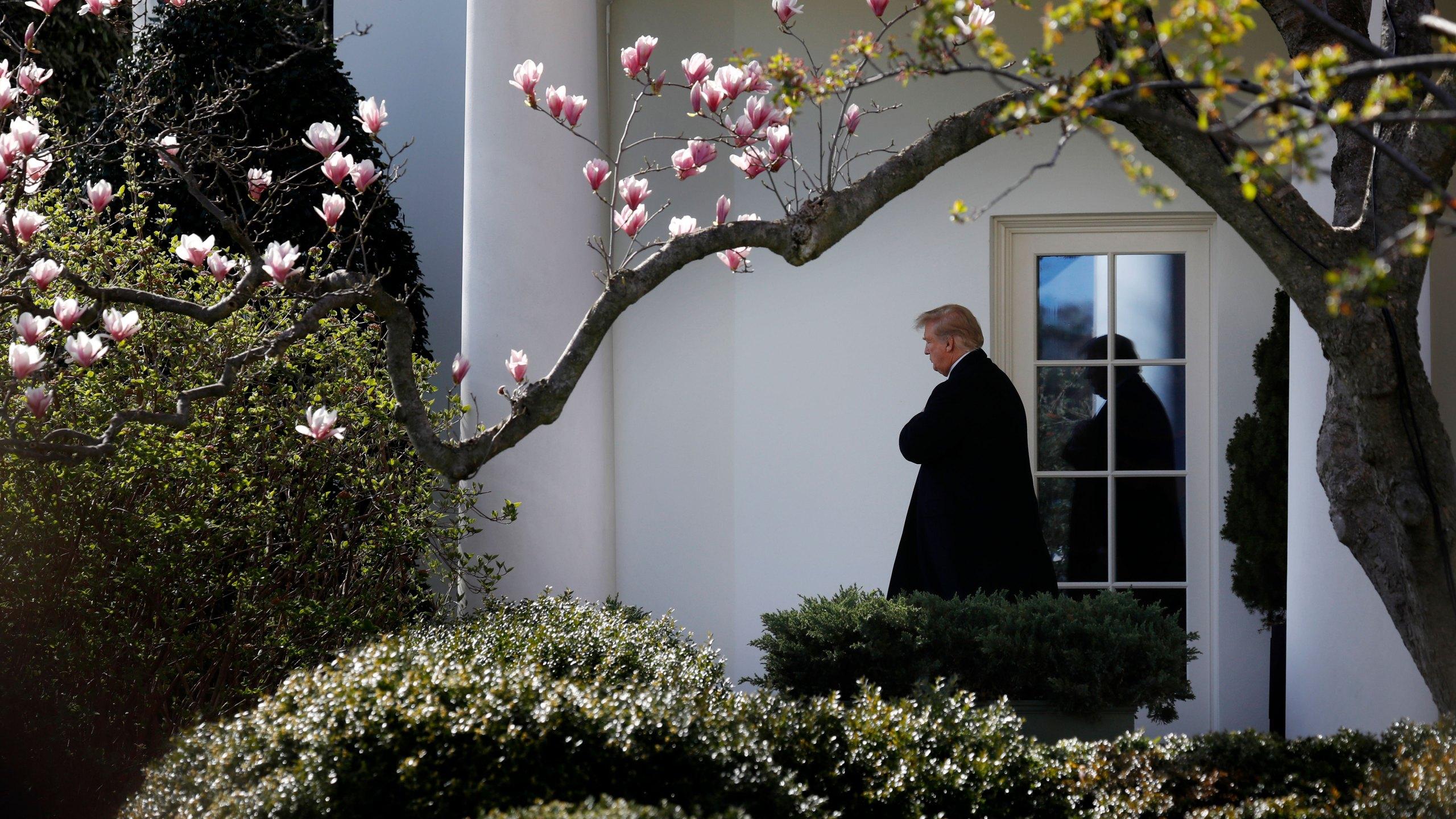 Trump_1554143142902.jpg