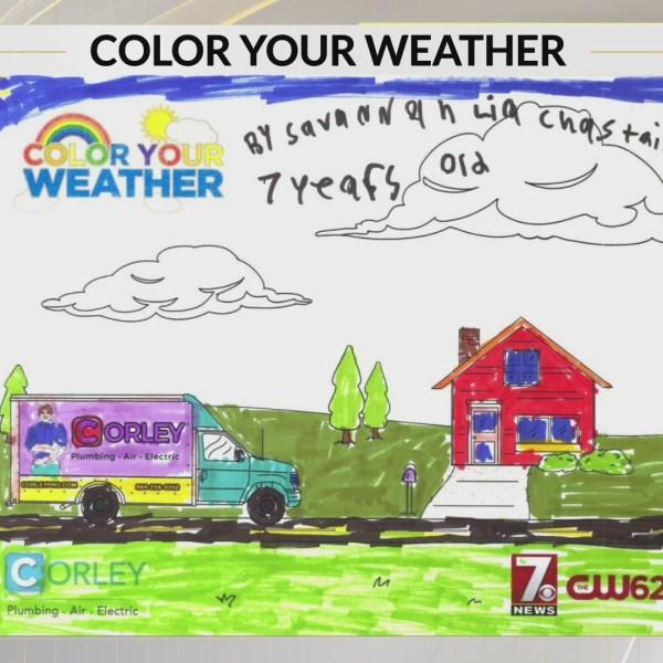 Color Your Weather: Savannah