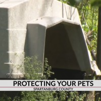 Spartanburg County Council to propose changes to animal ordinance to better protect pets