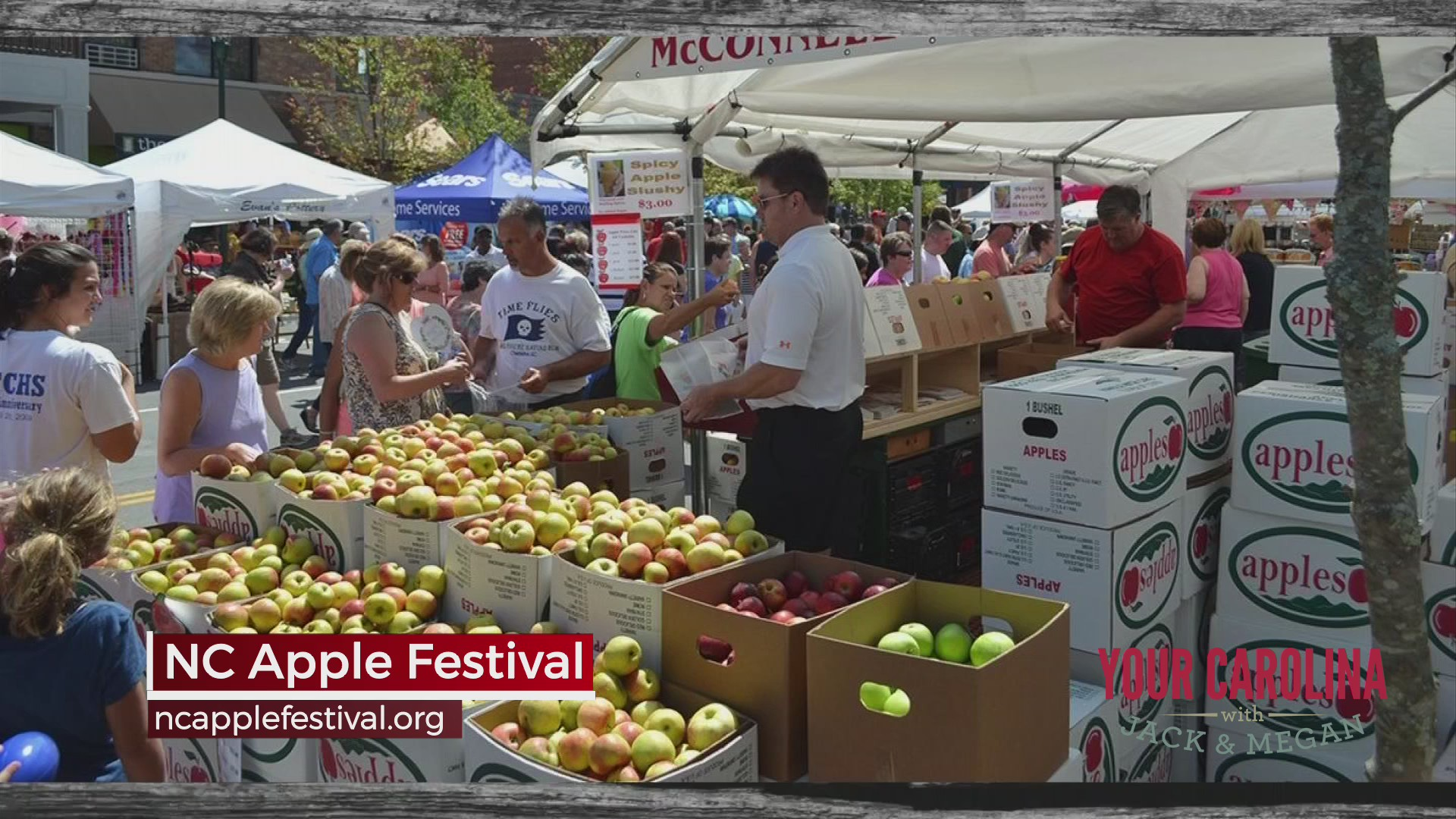 73rd Annual NC Apple Festival