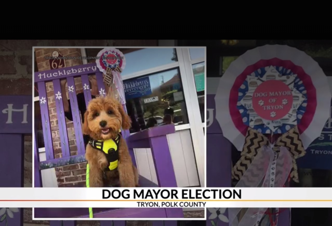 Tryon holding election for Dog Mayor