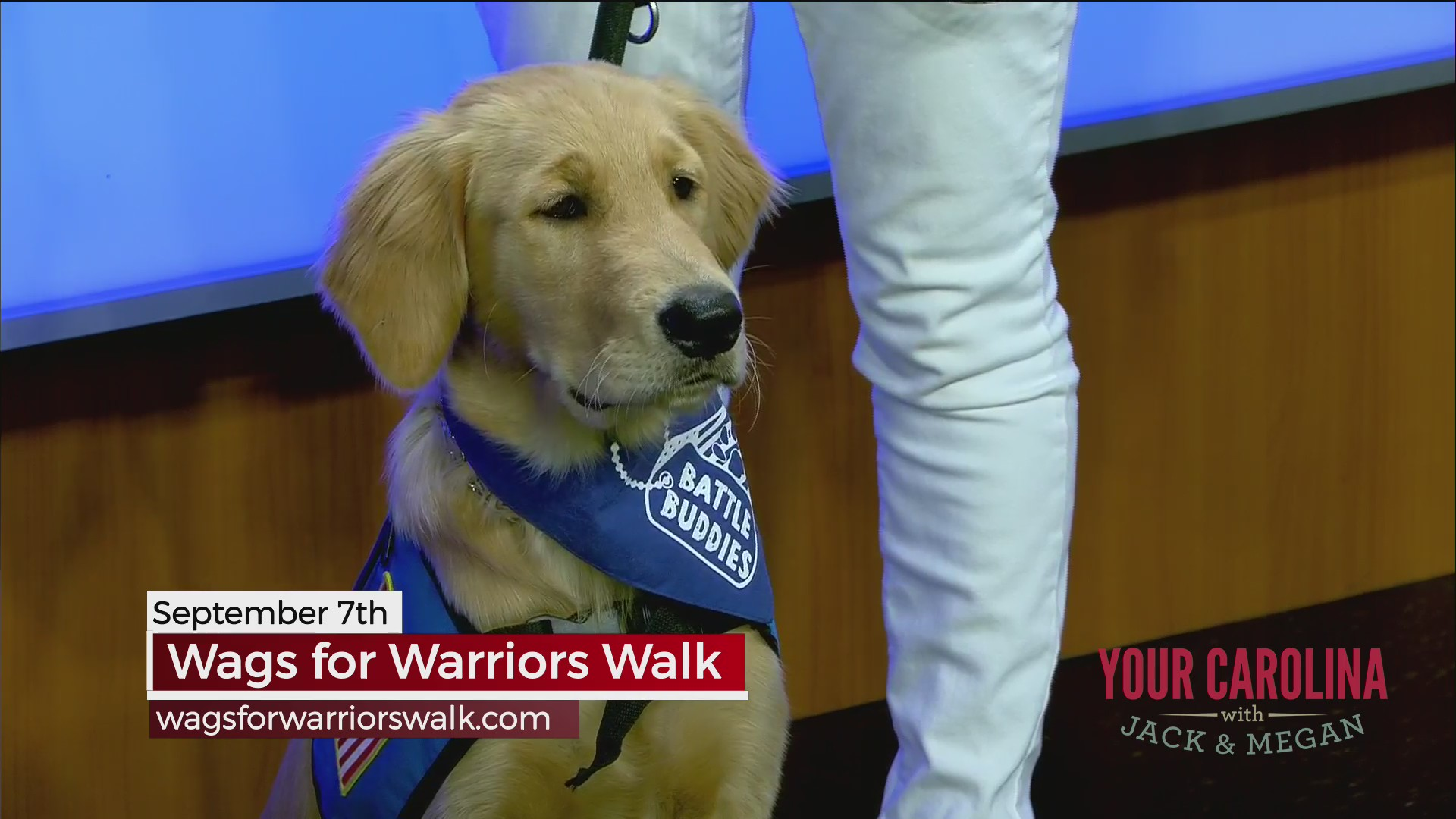 Wags for Warriors Walk