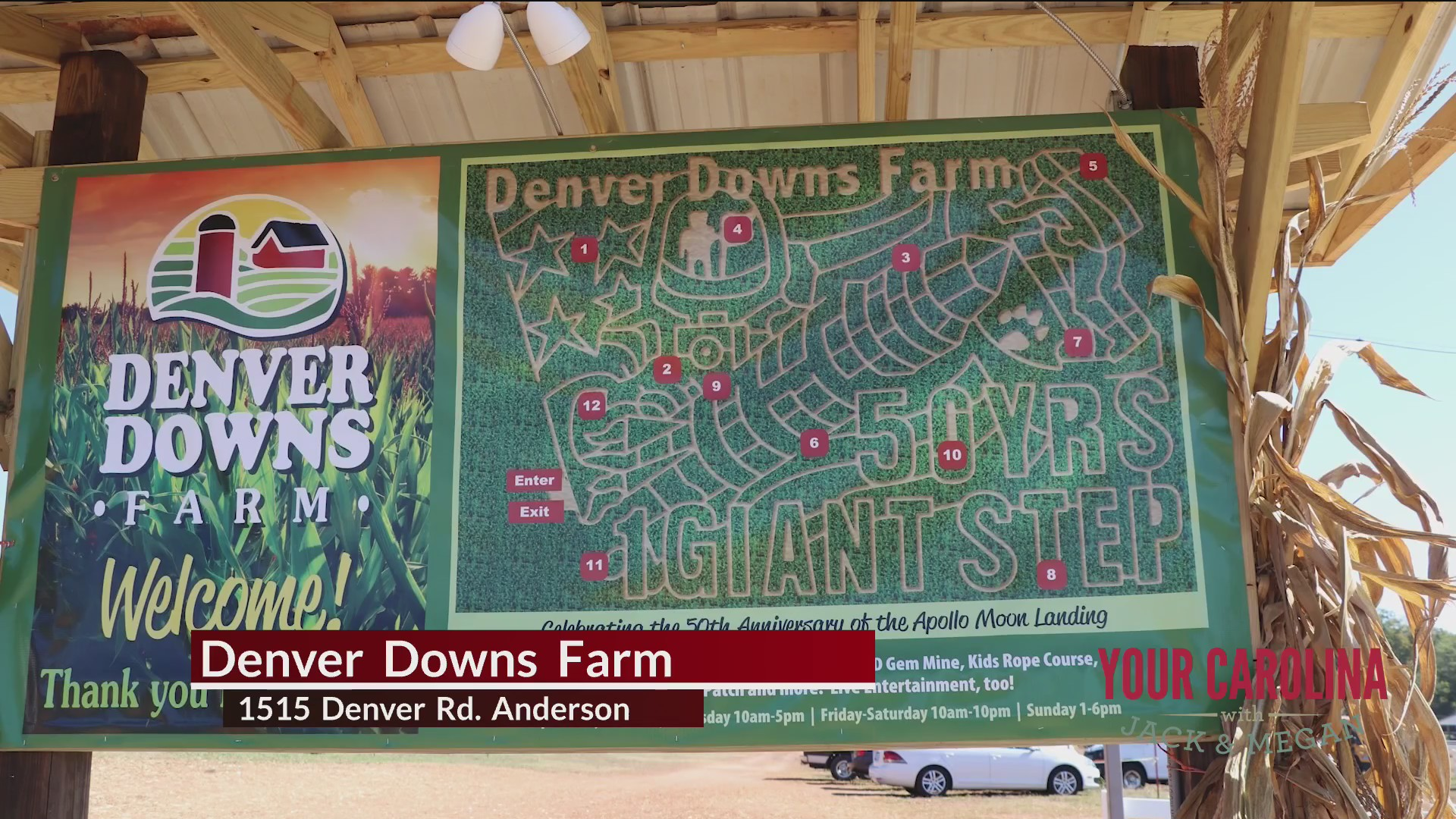 Get lost in the maze at Denver Downs Farm