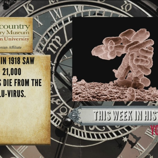 This Week In History - Spanish Flu-Virus